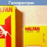 Когда и как использовать препарат Дифлюкан