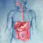 Гастроэнтерологические заболевания