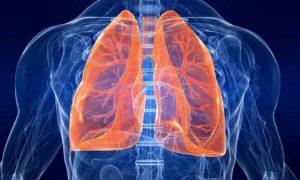 Инфекции органов респираторной системы