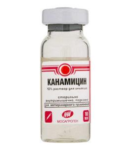 Канамицин уколы