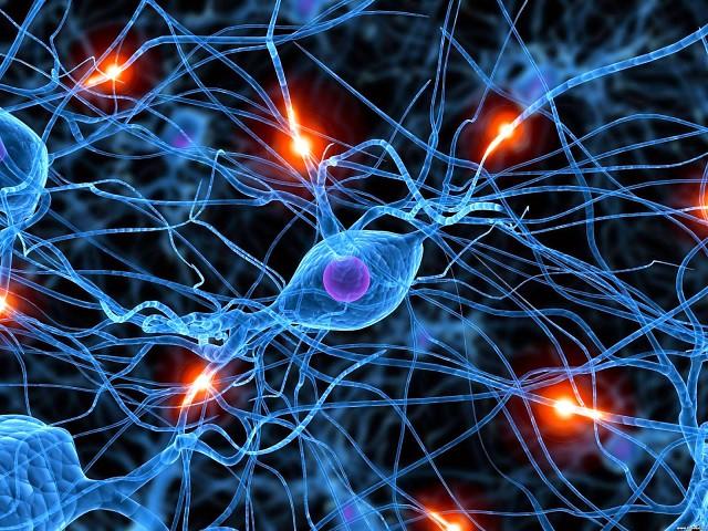 Нервный отдел