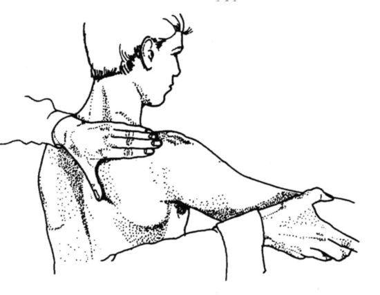 Тест: поднятие руки