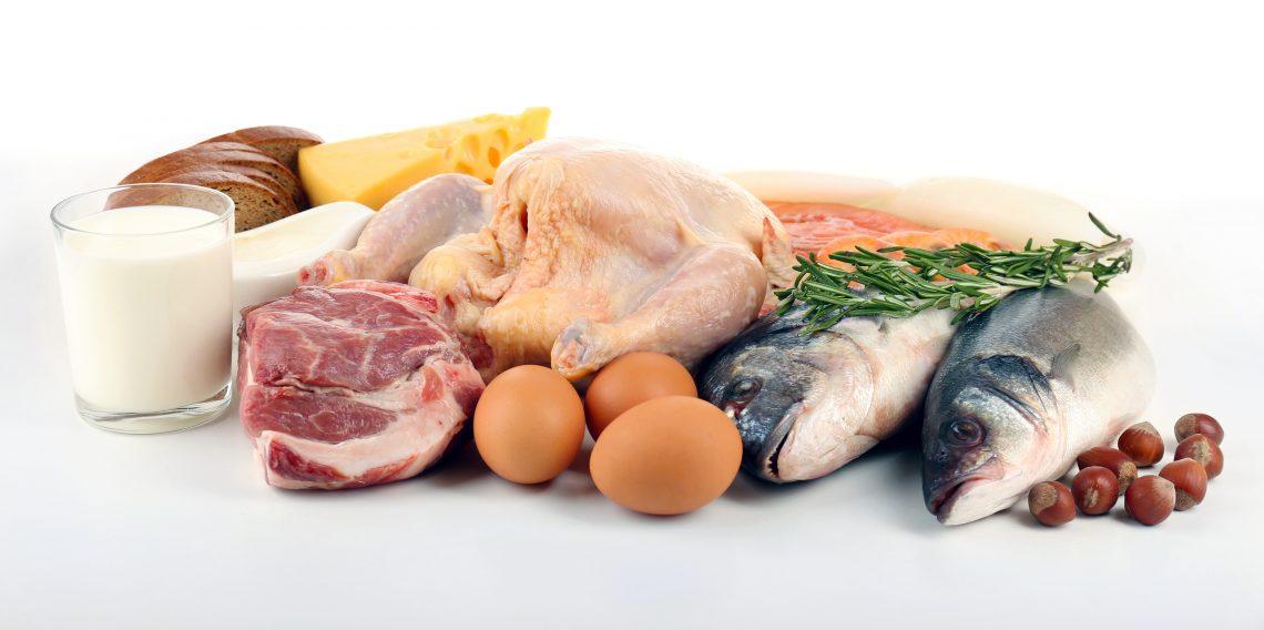 Основу питания составляют молочные продукты, постное мясо и рыба